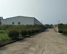 (出租) 大港附近乡镇8000平钢结构厂房,层高7米