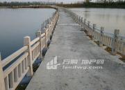(出租) 120亩鱼塘土地出租可分隔