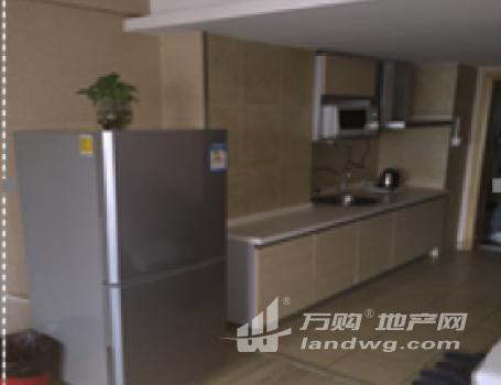 南京秦淮商业区公寓项目转让