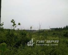 安徽宣城宣州区杨柳镇305亩土地