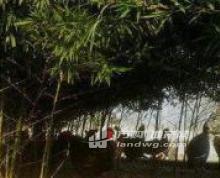 (出售)出售南京六合巴布洛旁50亩土地