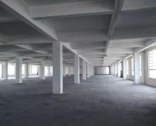 (出租) 大港标准厂房1楼和3楼招租