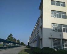 (出租) 大港通港路厂房独栋三层11000平米每层3400平