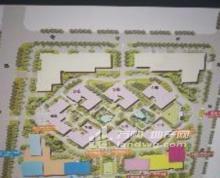 江北新区精装写字楼低价招商面积可分割免租期长