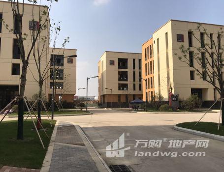 出售南京唯一家两证齐全标准化厂房50年产权地段优可按揭