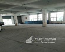 秣陵白玉兰宾馆旁正方大道出租一楼1860平方可分租