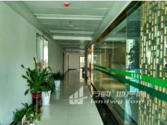 (出租)【住家】椒江金茂中心纯办公大楼精装楼层好