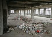 (出租)庙头 厂房 3000平米对外出租,预约看厂房