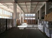 (出租)尧化 新港开发区核心地段 仓库 12000平米