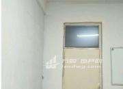 (出租)地下室29平 凤凰世嘉 29平米