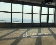 奥体甲级写字楼 苏宁慧谷 河西CBD 中心商务区 二号线旁