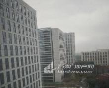 江北新区精装写字楼低价招商面积可分割