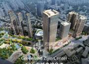 商铺 绿地紫金中心 鼓楼双地铁 狮子桥 新街口 湖南路 第二个莱迪