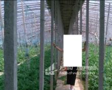 合肥市肥东县320亩设施农用地和农场