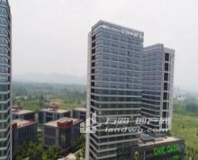 江北新区地铁口 精装修 6个月空置期现房招租可分割