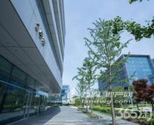 奥体南 海峡城招租 甲级办公楼 精装1000平 含税价 有食堂 可分割