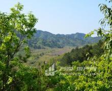 辽宁葫芦岛2500亩山地