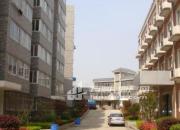 寅春路78号(金山花苑后门),综合楼2-4层出租。