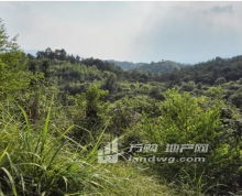 惠州市龙门县龙江镇1100亩空山地