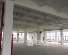 (出租) 新港开发区三楼丙二类 双货梯 全新库房 整租