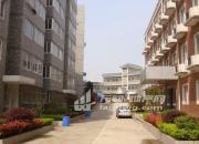 (出租) 寅春路78号(金山花苑后门),综合楼2-4层出租。
