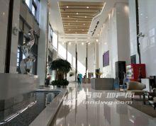 【苏宁慧谷】 眺望长江 河西万达广场旁 复式精装好房
