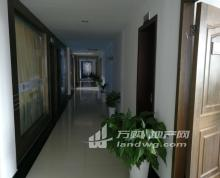 (出租)出租江州南路115号海马公寓办公楼5层,合租