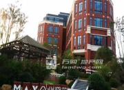 江宁大学城,地铁旁,甲级办公楼,企业独栋,可按揭,准现房