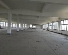 (出租) 丹徒新区工业园1楼门面和厂房10000平米新房毛坯