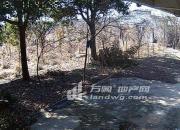 (出租) 句容农林职业技术学院旁 土地 20000平米
