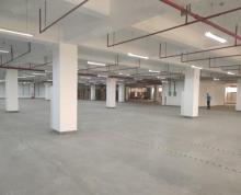 (出租)经开区独栋6600平高标准丙二类厂房仓库出租有平台雨棚