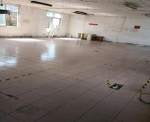 (出租)新塘工业区新星独立厂房出租