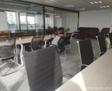 (出租)急租 先锋广场 新模范马路地铁口 凤凰国际大厦 拎包入驻