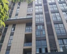 南京工业大学紫晶唐4.8米挑高好房出租