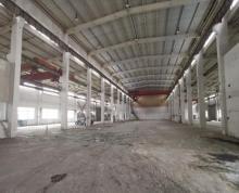 (出租)开发区新出一楼厂房 有多部行车使用层高十米