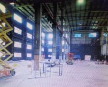 (出租)市区宝龙广场旁2000平厂房!可做体育馆汽车改造等经营