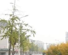 公交底站旁、朝阳、对面休闲广场