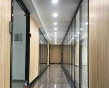 金山大厦 精装特价 整租或分租均可,电梯口好房