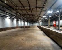 (出租)出租雨花区梅山厂房3000平 层高4.5米 可进13.5米车
