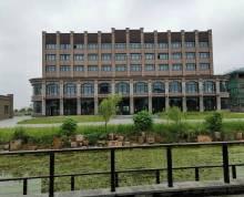 综合性大楼,毛坯未装修,可做写字楼、商铺、餐饮、酒店