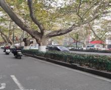 (出租)秦淮区三条巷临街旺铺房东直租 市口好 展示面大 来往人群不断