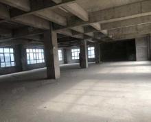 (出租)独栋厂房对外出租,堵门独院,欢迎咨询,价格优惠