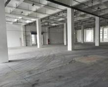 (出租)经开,框架,丙类消防,随时入住,环境好,可以分租,适合仓库