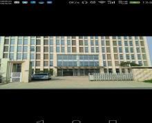 (出租) 桥林 开发区 厂房 10000平米厂房