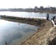 常州市金坛市40亩坑塘水面