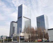 城东核心(中航科技大厦)招商直租 金蝶 南京中心 面积多选 随时看房