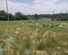 (转让)溧水经济开发区,工业用地200亩,对外出租