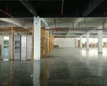 九龙湖 厂房仓库出租 适合各种业态 环氧地坪有喷淋