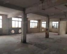 (出租)工业用地 800平加1500平厂房出租