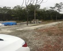 (出租)紫蓬山上小路2500平方砖渣空报对外出租